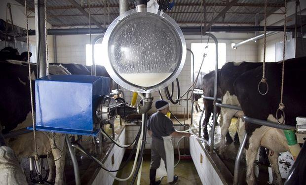 Consumo interno, precios y exportación: los principales ejes que abordó Basterra con el sector lechero