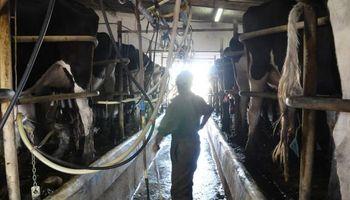 Producción láctea registró la peor caída en 46 años