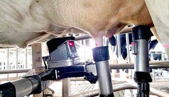 En Canadá tiran la leche cruda por caída de la demanda