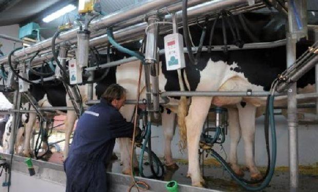 La intención de negociar grandes volúmenes de leche y conseguir mejores precios para cooperativas pero también para productores, es el aliciente de esta organización.