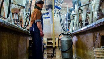 Precios al productor de leche en el mundo: Argentina cerró el 2020 con una caída del 9,7% en dólares respecto al 2019
