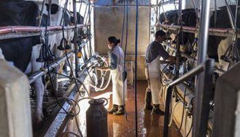 En Santa Fe quieren poner un precio de referencia para la leche