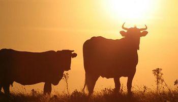 La década cierra con la temperatura media más alta de la historia