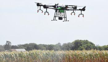 Tecnología aplicada a la ganadería: los desarrollos nacionales que parecen de ciencia ficción