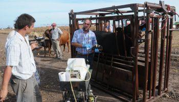 Todas las herramientas para una ganadería de precisión