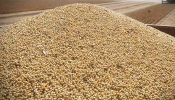 El último intento de Monsanto