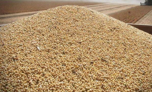 Último intento de Monsanto por negociar una resolución del Gobierno.