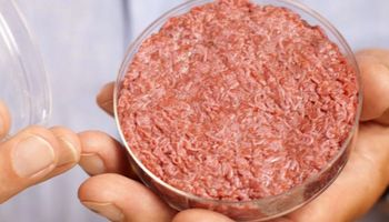 ¿Tendencia? En solo 10 años la carne sintética podría representar un 30 % del mercado chino