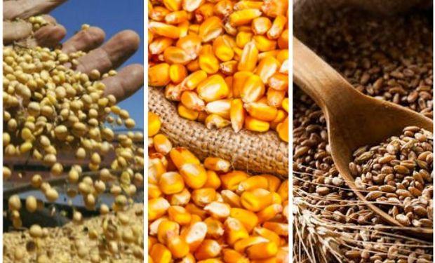 Datos del informe de mercados agrícolas de la Bolsa de Cereales de Córdoba.