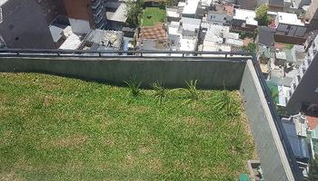 Terrazas verdes: una alternativa para mitigar los efectos de la lluvia