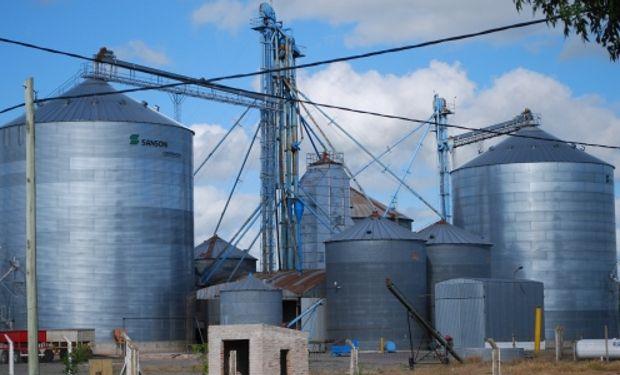 Hay que tener en cuenta los límites máximos de residuos de insecticidas en los granos, estipulados por la legislación nacional e internacional.