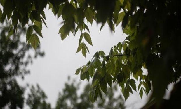 El otoño comienza con buenas perspectivas climáticas.