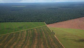 Afip creó el registro fiscal de tierras rurales explotadas