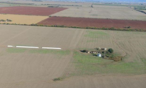 La AFIP prorroga hasta el 1 de noviembre la entrada en vigencia del registro de tierras rurales explotadas.