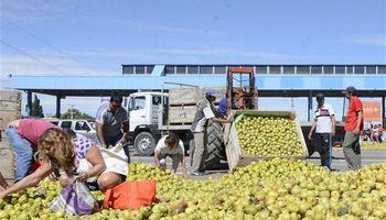 Productores vuelven a tirar frutas y piden ayuda para la recolección