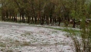 Un tornado y la caída de granizo dañaron unas 2500 hectáreas