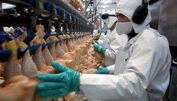El sector avícola acordó un incremento salarial del 12 %