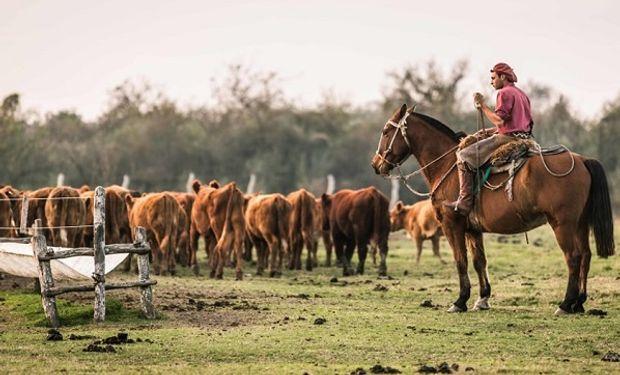 Qué pasa con los trabajadores rurales despedidos durante la prohibición del Gobierno