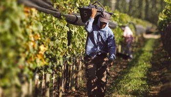 Tercerización laboral en el ámbito rural