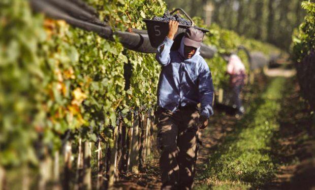 Trabajo adolescente agrario analizado por Arizmendi.