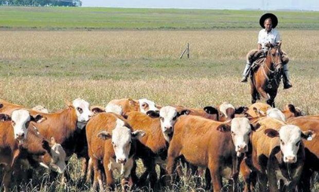 Actualizan valores mínimos y máximos de la prestación por desempleo de agrarios.