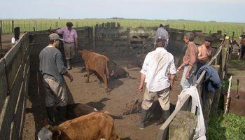 ¿Cuál es el salario promedio registrado en el sector agropecuario?