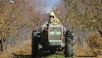 Se confirmó el bono de $2.000 para trabajadores rurales