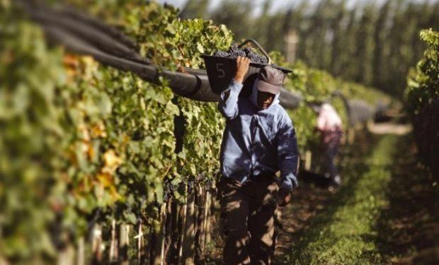 Régimen de Trabajo Agrario: modalidades de contratación permanente.