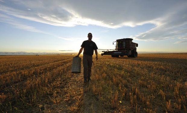 Nueva reglamentación para el seguro de desempleo en el ámbito rural.