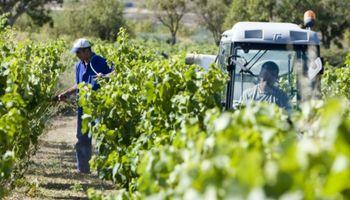 Trabajadores rurales lograron un ajuste salarial del 37%