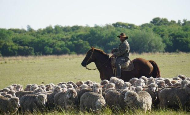 Ausencias y licencia por enfermedad en el trabajo rural .