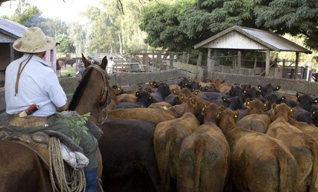 Trabajador rural: todo sobre el período de prueba en el régimen agrario