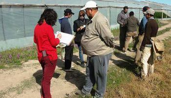 Trabajo conjunto: con 50 fiscalizaciones evitaron más de 440 casos de explotación en el ámbito rural