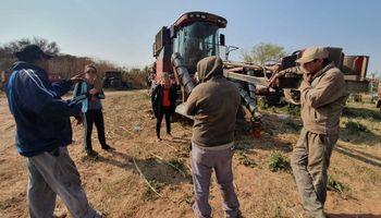 Trabajo agrario: detalles de la contratación temporal en la situación actual de emergencia