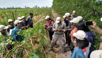 Por qué se celebra hoy el Día del Trabajador Rural
