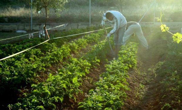 Trabajadores extranjeros en el ámbito rural.