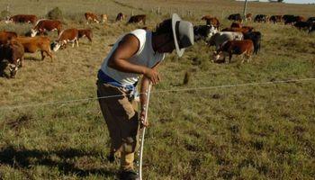 Trabajadores agrarios: Prestación mensual por Desempleo