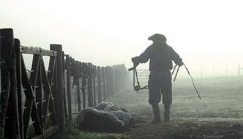 Se oficializó el bono de 10 mil pesos para los trabajadores rurales