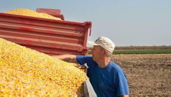 ¿Puede un trabajador rural jubilado volver a la actividad?