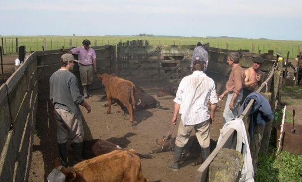 La Jornada de Trabajo en el régimen agrario.