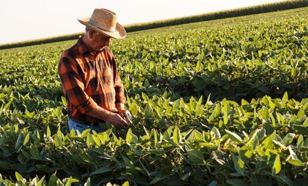 Se dispusieron para los trabajadores rurales nuevas formas de denominación y pago de aportes y contribuciones a la seguridad social.