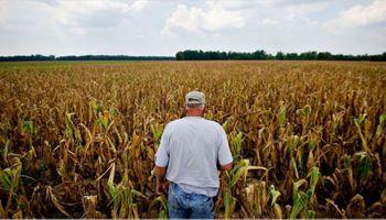 Trabajadores del campo quedaron últimos en el ranking de los que más y menos cobran