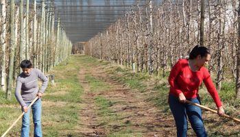 Trabajadores frutihortícolas acordaron mejoras salariales de 28% a partir de este mes