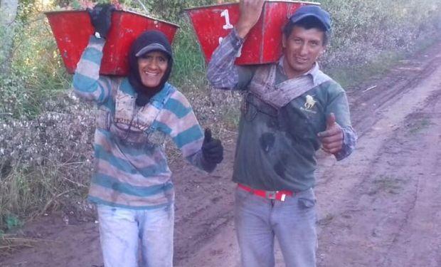 Trabajadores golondrinas: la odisea de volver a casa durante la pandemia por coronavirus