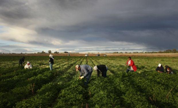 ¿Es aplicable  el trabajo rotativo o por equipo en el ámbito rural?