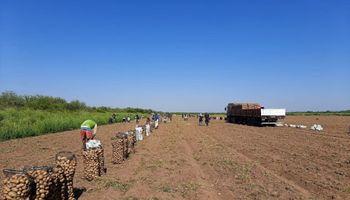 Detalle: los nuevos salarios de los peones rurales y del personal jerarquizado del campo