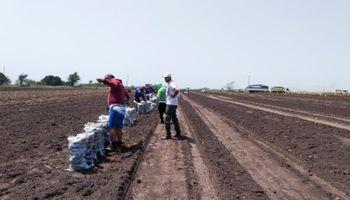 """""""Insólita"""" denuncia y posterior aclaración por el bono para trabajadores rurales"""