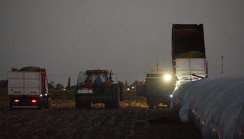 El agro fue el sector que generó la mayor cantidad de empleos genuinos en el último año