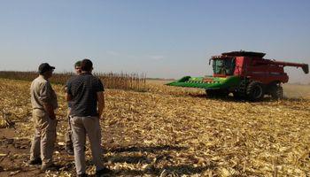 El sector agropecuario generó más de 4500 puestos de trabajo en el último año