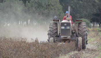Piden que los créditos para la compra de maquinaria agrícola cubran el 100 % del valor